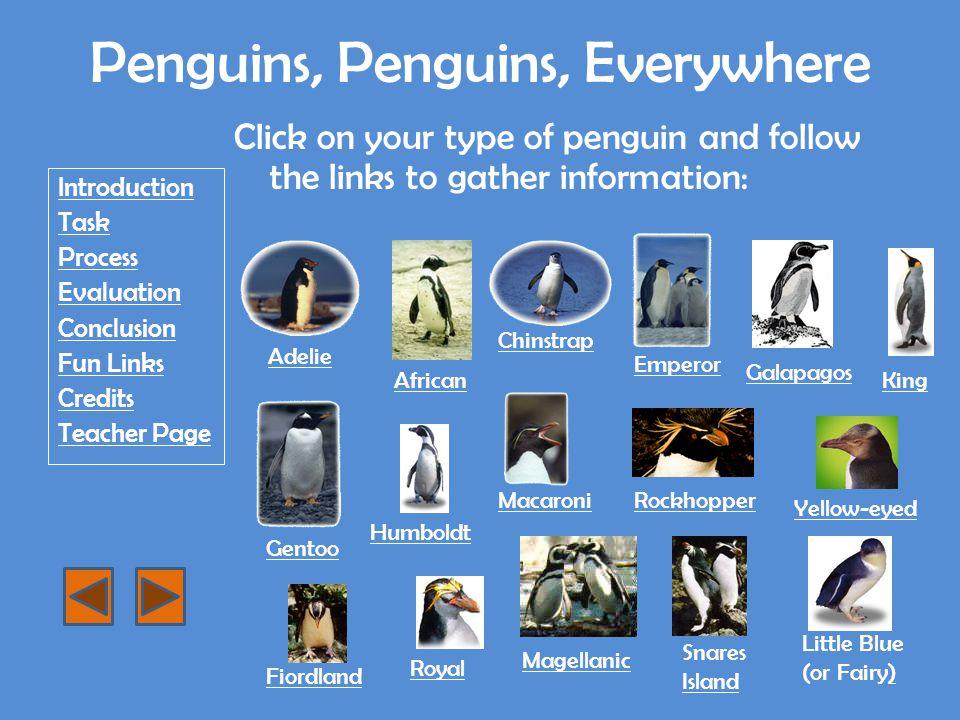 Macaroni Penguin http://www.siec.k12.in.us/west/proj/penguins/mac.html http://en.wikipedia.org/wiki/Macaroni_Penguin http://www.antarcticconnection.com/antarctic/wildlife/penguins/macaroni.shtml http://www.penguins.cl/macaroni-penguins.htm http://www.d81.w-cook.k12.il.us/kennedy/asmith/penguins/macaroni.htm http://www.arkive.org/macaroni-penguin/eudyptes-chrysolophus/ http://www.seaworld.org/animal-info/Animal- bytes/animalia/eumetazoa/coelomates/deuterostomes/chordata/craniata/ave s/sphenisciformes/macaroni-penguin.htm http://www.seaworld.org/animal-info/Animal- bytes/animalia/eumetazoa/coelomates/deuterostomes/chordata/craniata/ave s/sphenisciformes/macaroni-penguin.htm Return to WebQuest