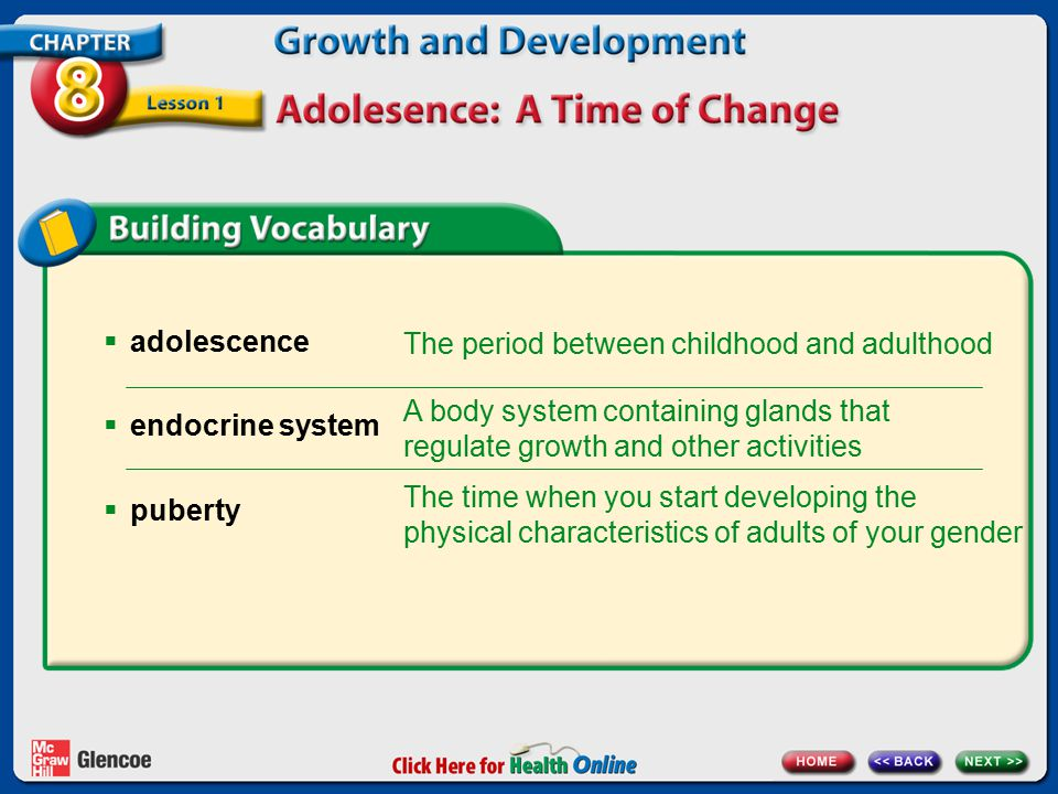  adolescence  endocrine system  puberty The period between childhood and adulthood A body system containing glands that regulate growth and other a