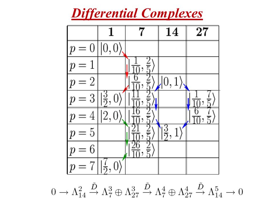 Differential Complexes