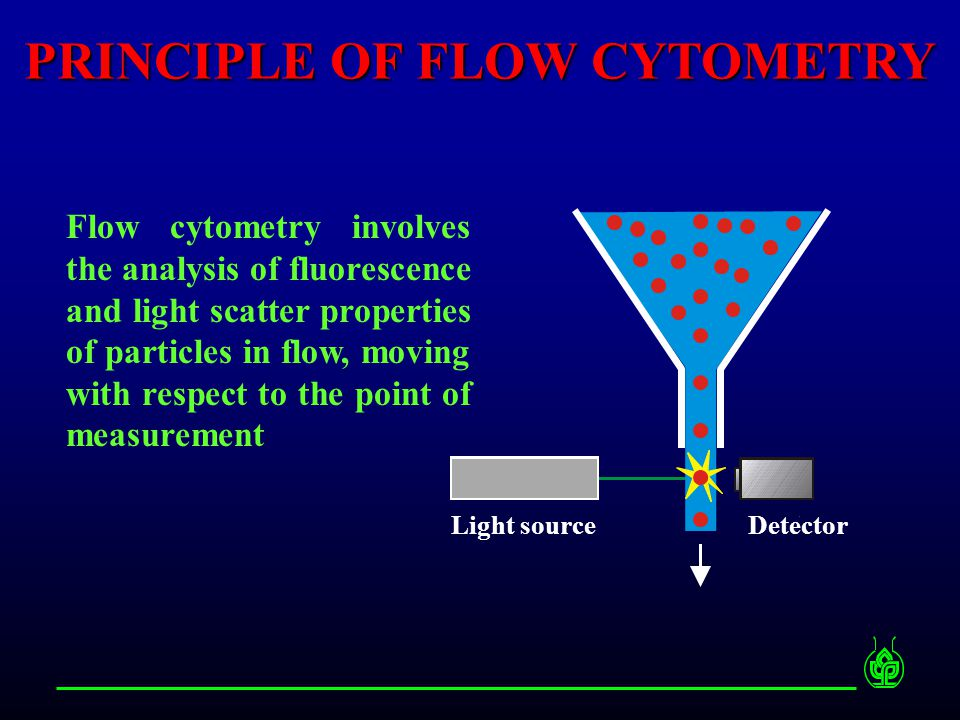 PRINCIPLE OF FLOW CYTOMETRY Flow cytometry involves the analysis of fluorescence and light scatter properties of particles in flow, moving with respect to the point of measurement