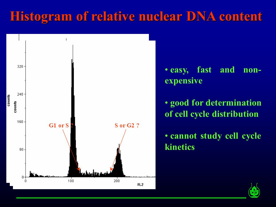 Histogram of relative nuclear DNA content easy, fast and non- expensive good for determination of cell cycle distribution cannot study cell cycle kine