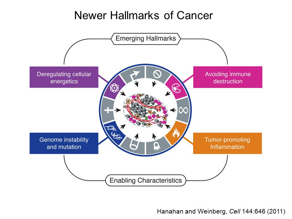 Hanahan and Weinberg, Cell 144:646 (2011) Therapeutic Targeting of the Hallmarks of Cancer