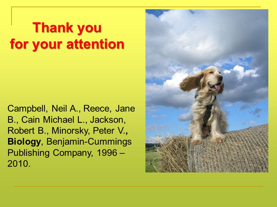 Thank you for your attention Campbell, Neil A., Reece, Jane B., Cain Michael L., Jackson, Robert B., Minorsky, Peter V., Biology, Benjamin-Cummings Publishing Company, 1996 – 2010.