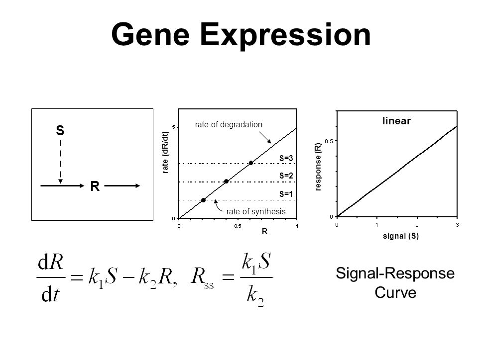 R S response (R) signal (S) linear S=1 R rate (dR/dt) rate of degradation rate of synthesis S=2 S=3 Gene Expression Signal-Response Curve