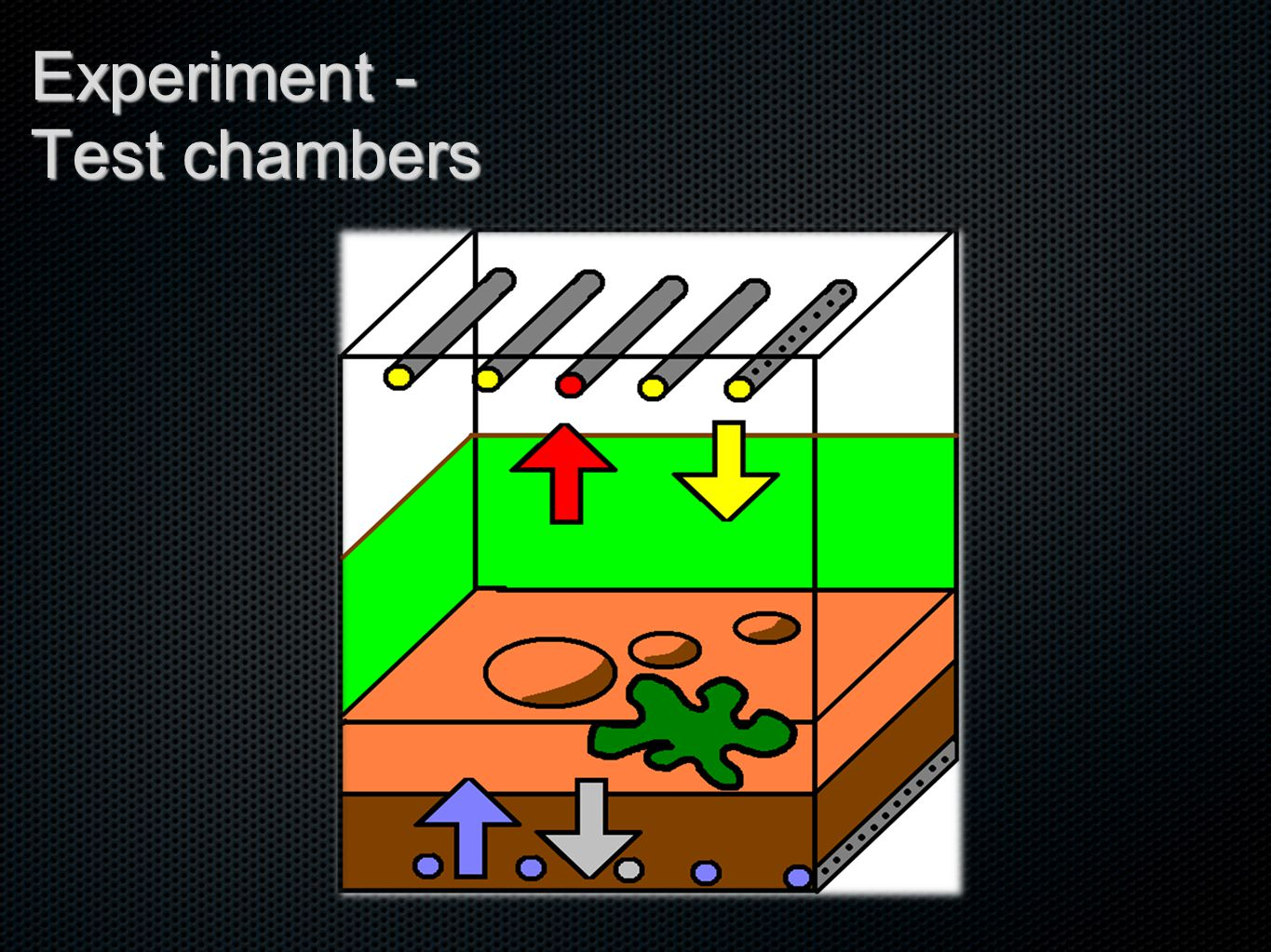 Experiment - Test chambers