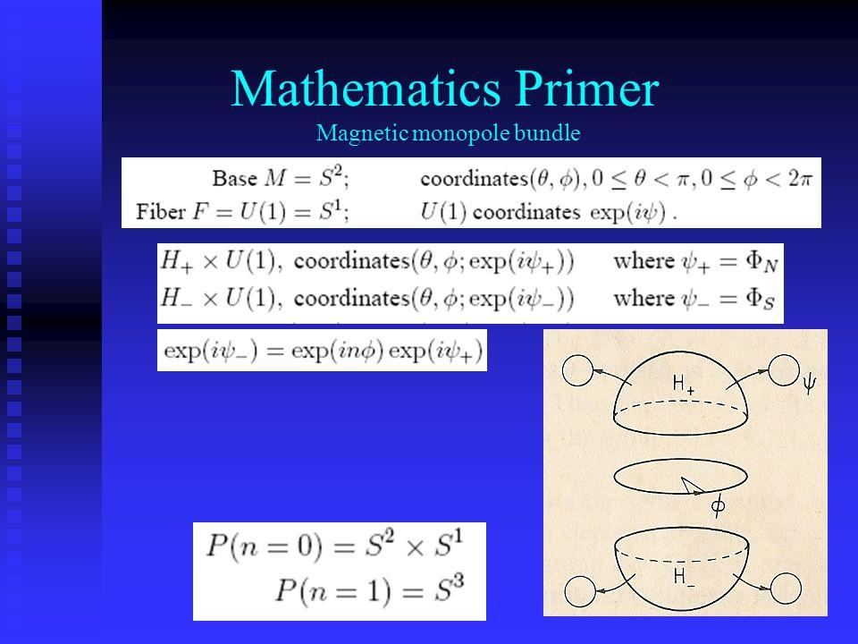 Mathematics Primer Magnetic monopole bundle