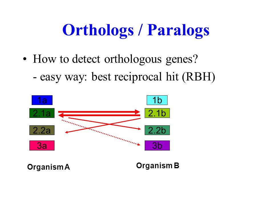 Orthologs / Paralogs How to detect orthologous genes.