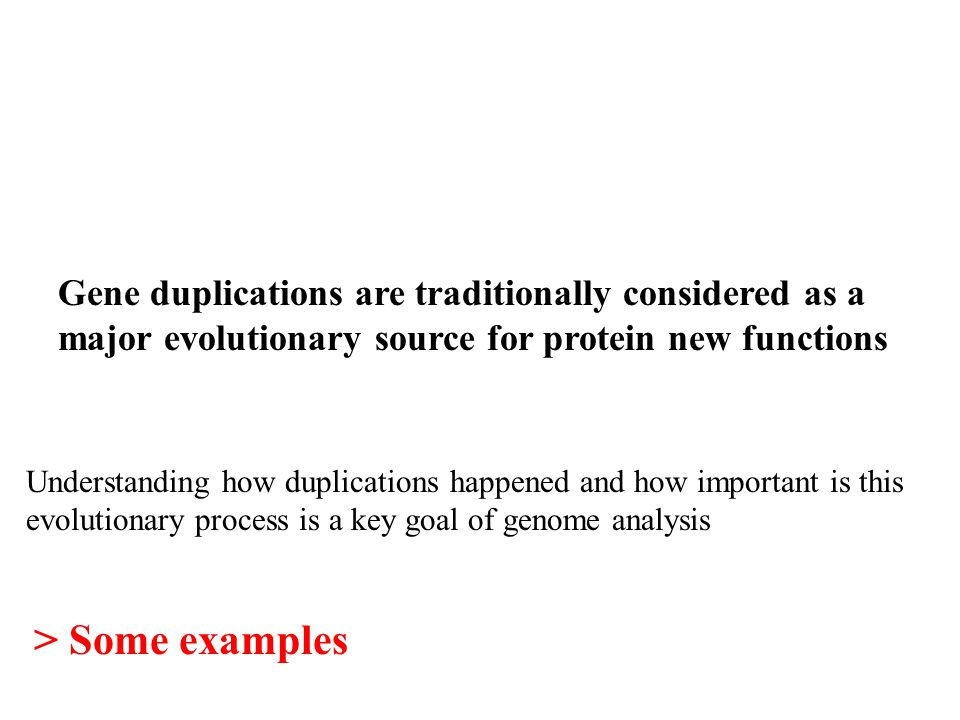 Gene duplications are traditionally considered as a major evolutionary source for protein new functions Understanding how duplications happened and how important is this evolutionary process is a key goal of genome analysis > Some examples