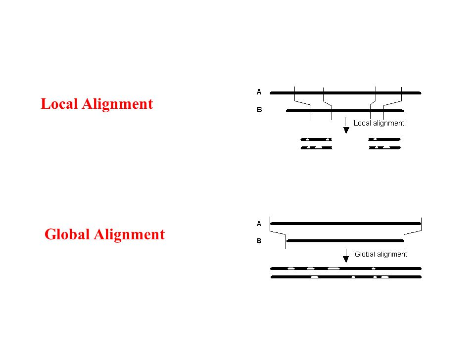 Local Alignment Global Alignment
