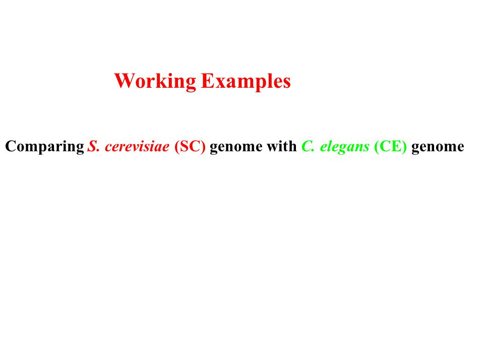 Working Examples Comparing S. cerevisiae (SC) genome with C. elegans (CE) genome
