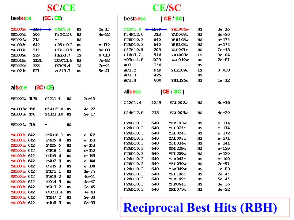 SC/CECE/SC Reciprocal Best Hits (RBH)