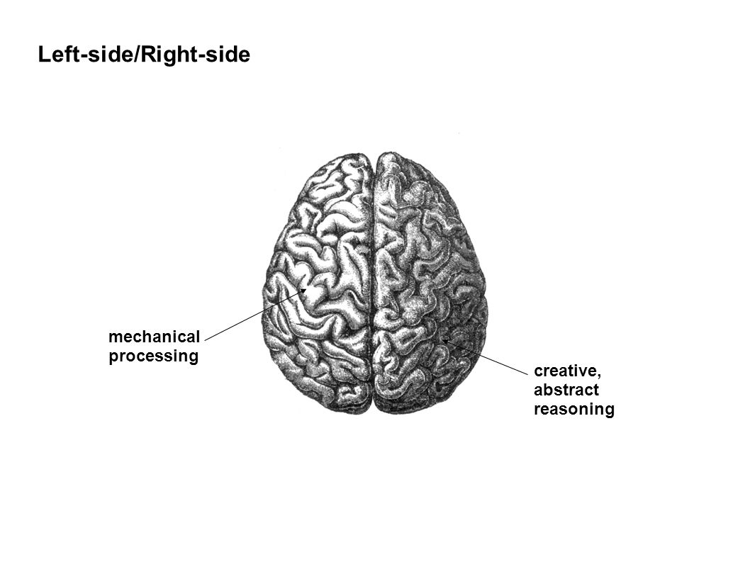 Left-side/Right-side mechanical processing creative, abstract reasoning