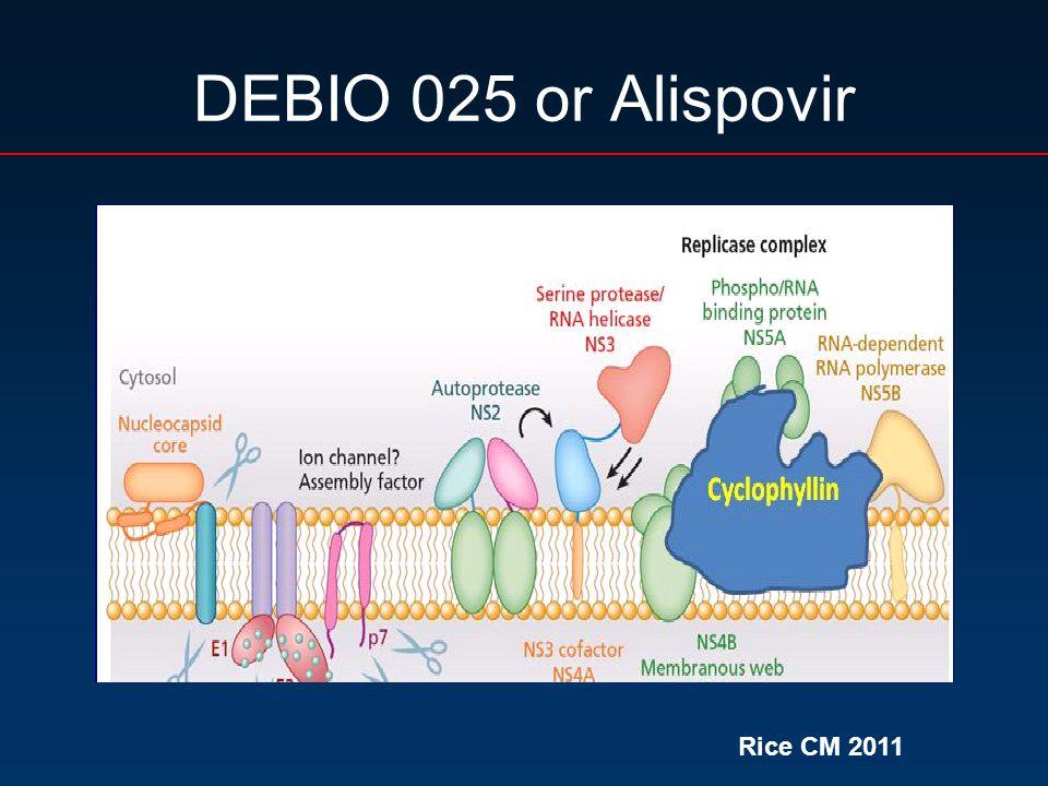 DEBIO 025 or Alispovir Rice CM 2011