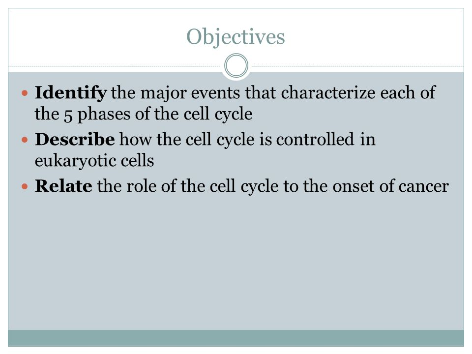 Objectives Identify the major events that characterize each of the 5 phases of the cell cycle Describe how the cell cycle is controlled in eukaryotic