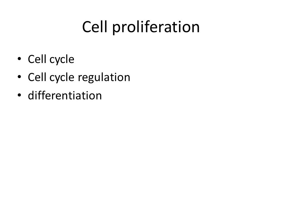 Cell proliferation Cell cycle Cell cycle regulation differentiation
