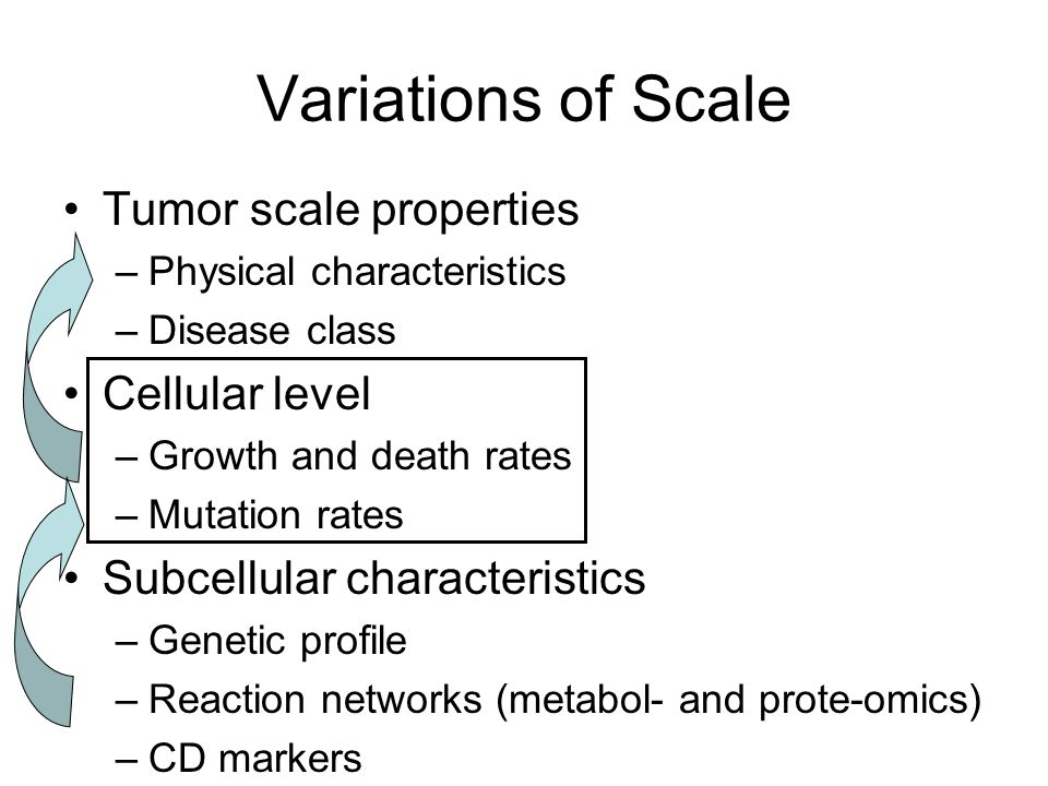Tumor scale properties –Physical characteristics –Disease class Cellular level –Growth and death rates –Mutation rates Subcellular characteristics –Genetic profile –Reaction networks (metabol- and prote-omics) –CD markers Variations of Scale