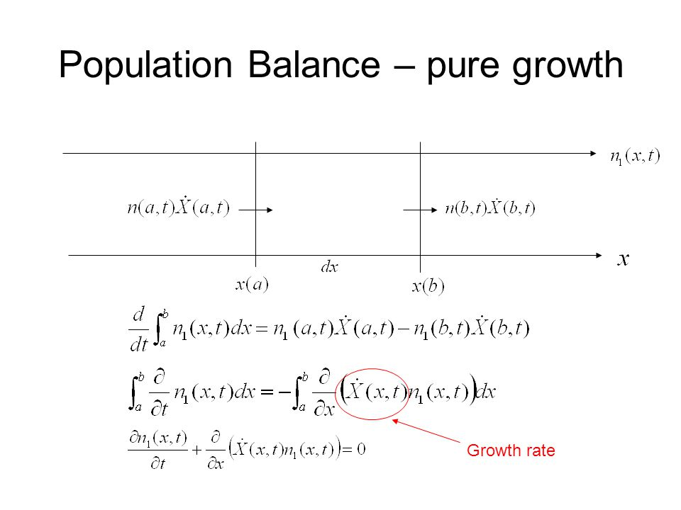 Population Balance – pure growth Growth rate