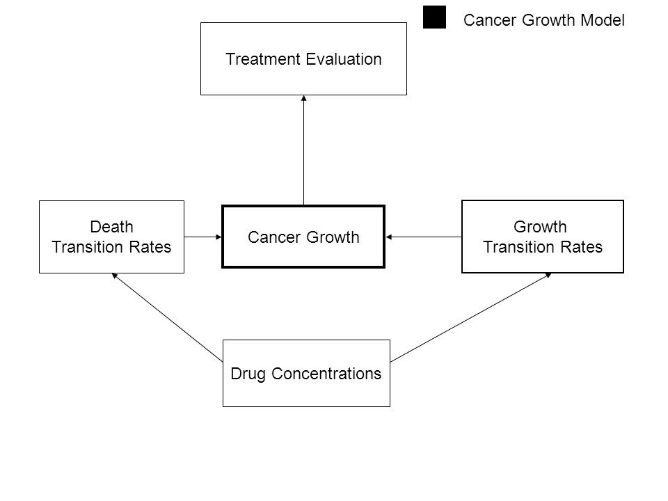 Cancer Growth Cancer Growth Model Growth Transition Rates Death Transition Rates Drug Concentrations Treatment Evaluation