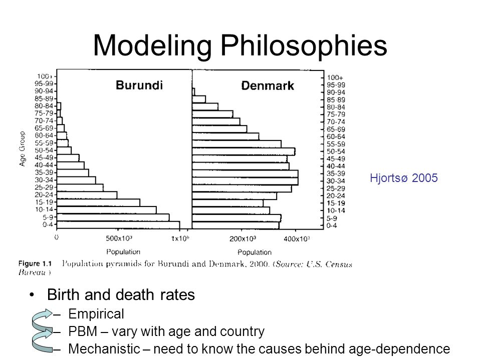 Modeling Philosophies Birth and death rates –Empirical –PBM – vary with age and country –Mechanistic – need to know the causes behind age-dependence Hjortsø 2005