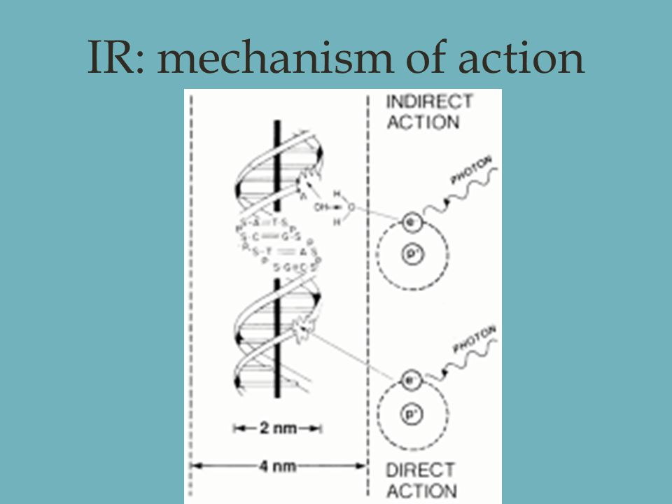 IR: mechanism of action.