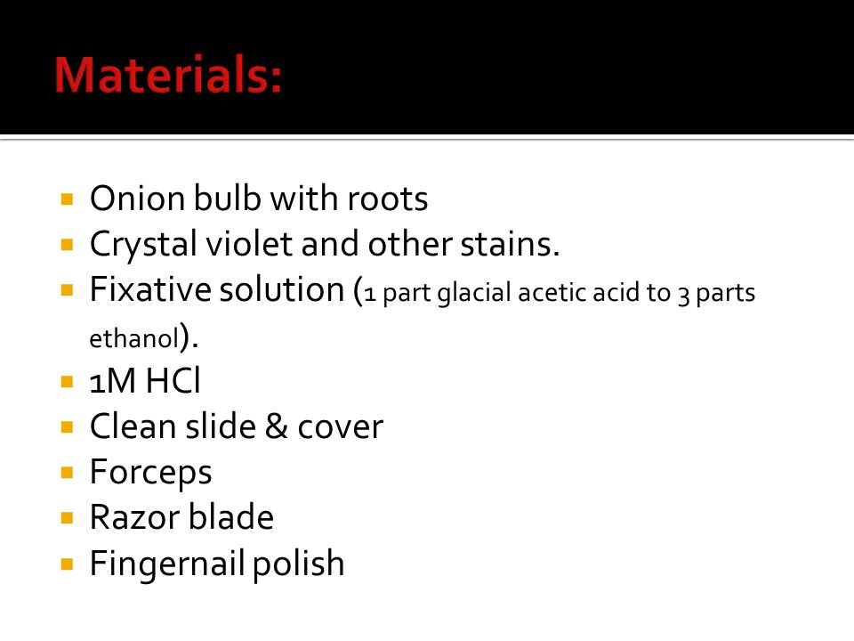  Onion bulb with roots  Crystal violet and other stains.  Fixative solution ( 1 part glacial acetic acid to 3 parts ethanol ).  1M HCl  Clean sli