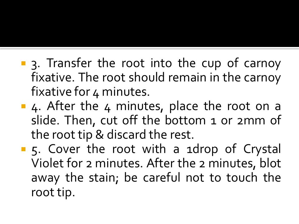  3. Transfer the root into the cup of carnoy fixative. The root should remain in the carnoy fixative for 4 minutes.  4. After the 4 minutes, place t