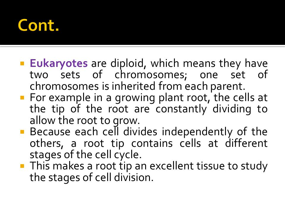  Eukaryotes are diploid, which means they have two sets of chromosomes; one set of chromosomes is inherited from each parent.  For example in a grow