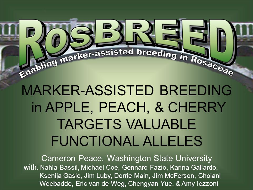 Outline of Presentation  The RosBREED Project  Available Jewels in the Genome  Jewels in Breeding Application  What's Next.