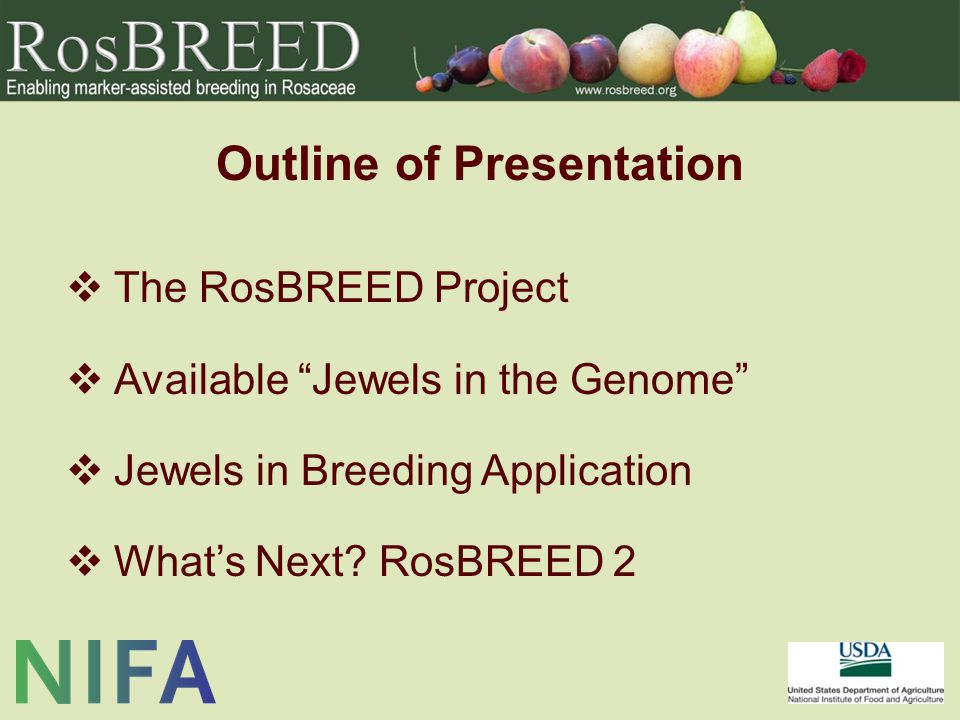 "Outline of Presentation  The RosBREED Project  Available ""Jewels in the Genome""  Jewels in Breeding Application  What's Next? RosBREED 2"