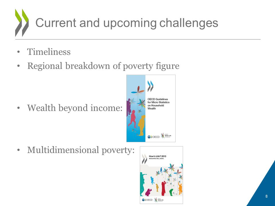 Timeliness Regional breakdown of poverty figure Wealth beyond income: Multidimensional poverty: 8 Current and upcoming challenges