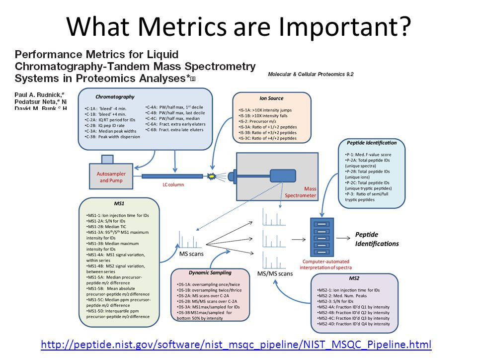 What Metrics are Important.