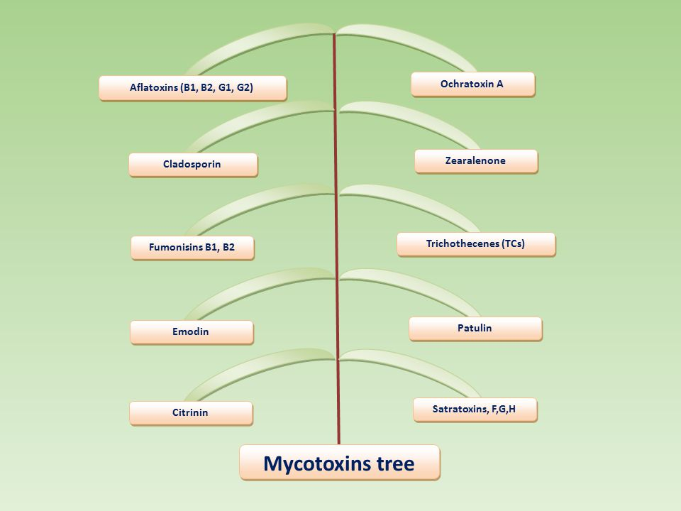 Ochratoxin A Aflatoxins (B1, B2, G1, G2) Zearalenone Cladosporin Trichothecenes (TCs) Fumonisins B1, B2 Patulin Emodin Satratoxins, F,G,H Citrinin Myc