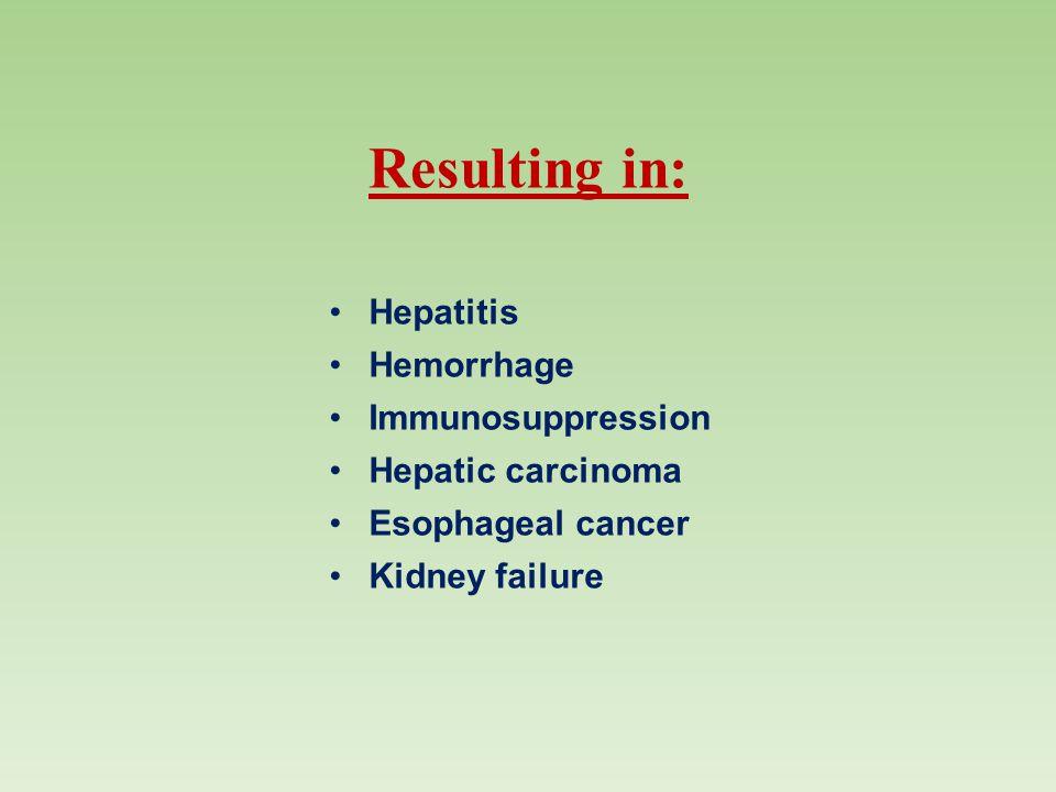 Resulting in: Hepatitis Hemorrhage Immunosuppression Hepatic carcinoma Esophageal cancer Kidney failure