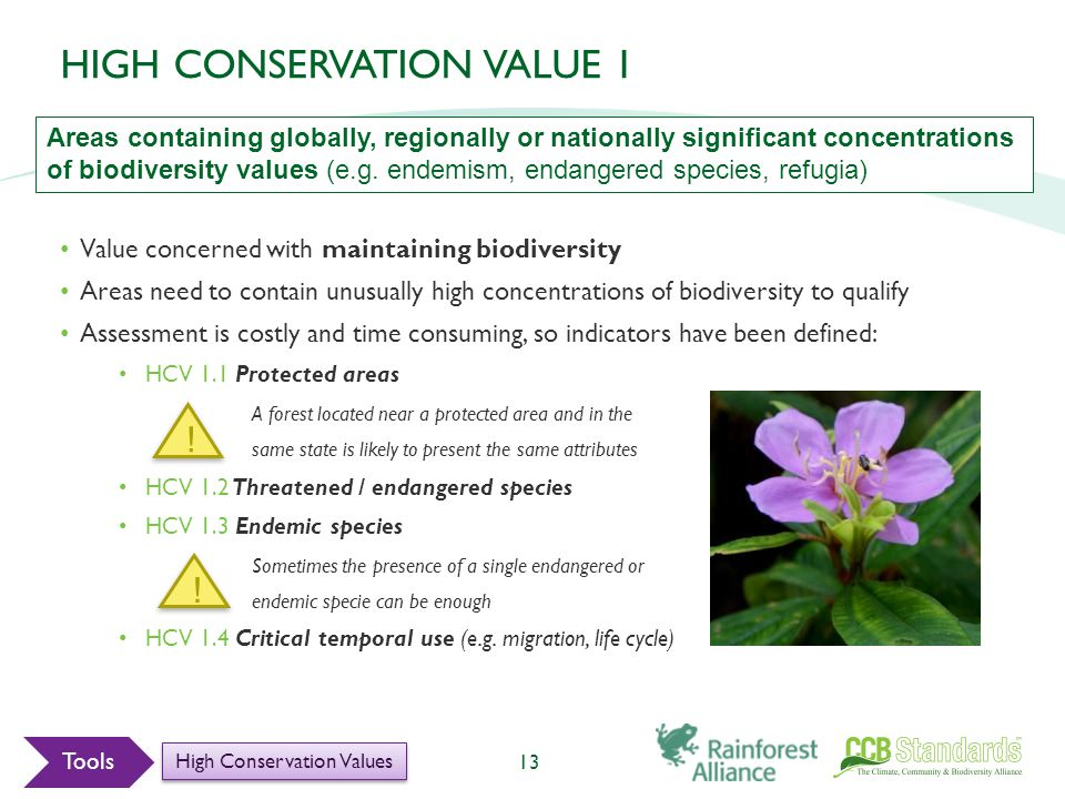 Value concerned with maintaining biodiversity Areas need to contain unusually high concentrations of biodiversity to qualify Assessment is costly and time consuming, so indicators have been defined: HCV 1.1 Protected areas A forest located near a protected area and in the same state is likely to present the same attributes HCV 1.2 Threatened / endangered species HCV 1.3 Endemic species Sometimes the presence of a single endangered or endemic specie can be enough HCV 1.4 Critical temporal use (e.g.