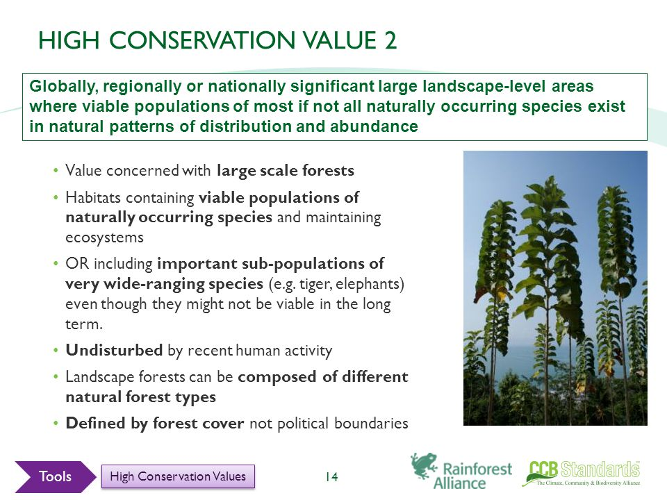 Value concerned with large scale forests Habitats containing viable populations of naturally occurring species and maintaining ecosystems OR including important sub-populations of very wide-ranging species (e.g.