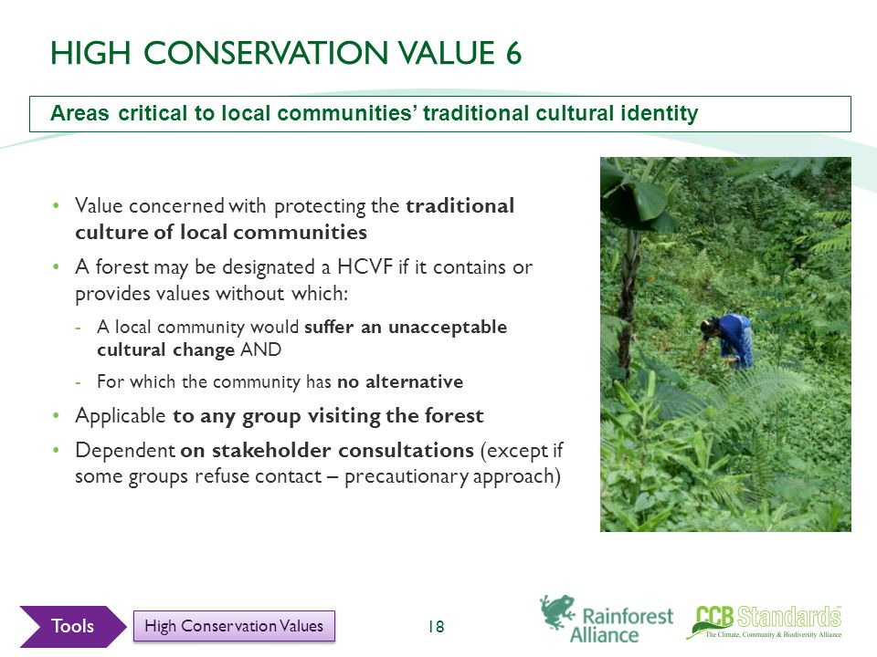 Value concerned with protecting the traditional culture of local communities A forest may be designated a HCVF if it contains or provides values without which: -A local community would suffer an unacceptable cultural change AND -For which the community has no alternative Applicable to any group visiting the forest Dependent on stakeholder consultations (except if some groups refuse contact – precautionary approach) 18 Tools High Conservation Values HIGH CONSERVATION VALUE 6 Areas critical to local communities' traditional cultural identity