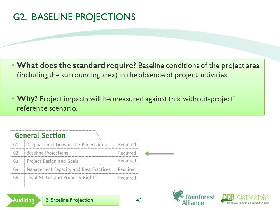 G2. BASELINE PROJECTIONS 45 Auditing 2. Baseline Projection What does the standard require.