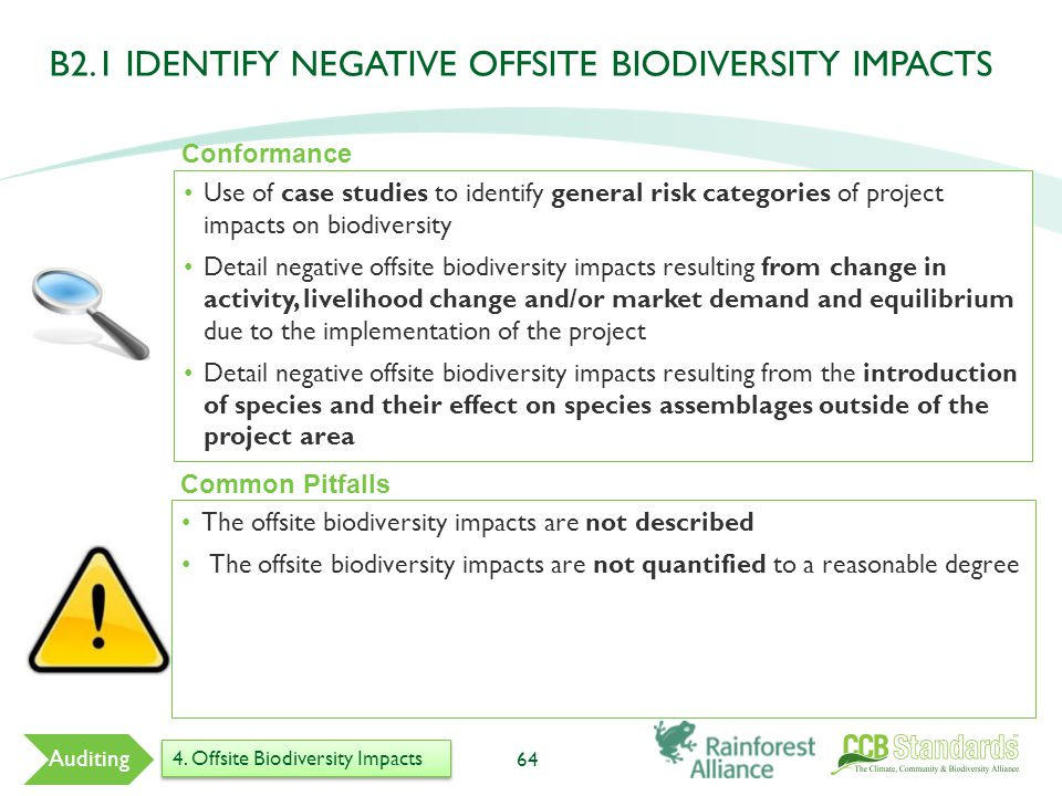 Use of case studies to identify general risk categories of project impacts on biodiversity Detail negative offsite biodiversity impacts resulting from change in activity, livelihood change and/or market demand and equilibrium due to the implementation of the project Detail negative offsite biodiversity impacts resulting from the introduction of species and their effect on species assemblages outside of the project area 64 Common Pitfalls The offsite biodiversity impacts are not described The offsite biodiversity impacts are not quantified to a reasonable degree Conformance Auditing 4.