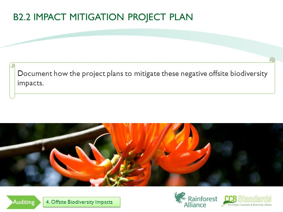 Document how the project plans to mitigate these negative offsite biodiversity impacts.