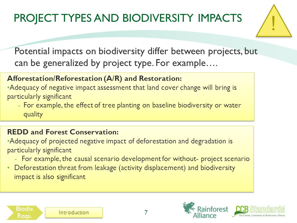 PROJECT TYPES AND BIODIVERSITY IMPACTS Potential impacts on biodiversity differ between projects, but can be generalized by project type.