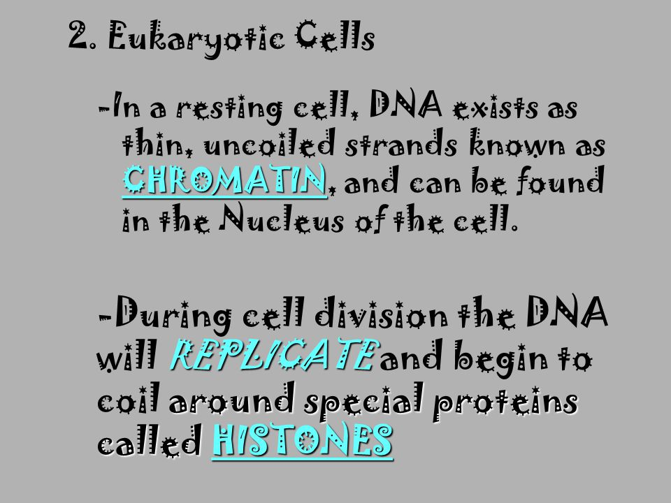 I. CHROMOSOMES n A. Formation of New Cells n 1. Prokaryotic Cells BINARY FISSION -Reproduce by BINARY FISSION -Create a genetic duplicate
