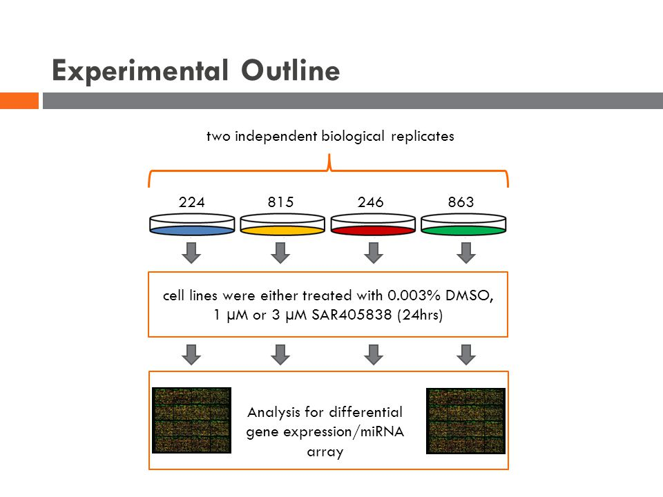 Experimental Outline two independent biological replicates 224 815246863 cell lines were either treated with 0.003% DMSO, 1 µM or 3 µM SAR405838 (24hrs) Analysis for differential gene expression/miRNA array