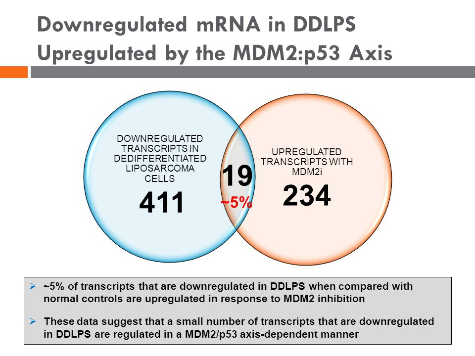 Downregulated mRNA in DDLPS Upregulated by the MDM2:p53 Axis UPREGULATED TRANSCRIPTS WITH MDM2i 234 DOWNREGULATED TRANSCRIPTS IN DEDIFFERENTIATED LIPOSARCOMA CELLS 411 19  ~5% of transcripts that are downregulated in DDLPS when compared with normal controls are upregulated in response to MDM2 inhibition  These data suggest that a small number of transcripts that are downregulated in DDLPS are regulated in a MDM2/p53 axis-dependent manner ~5%