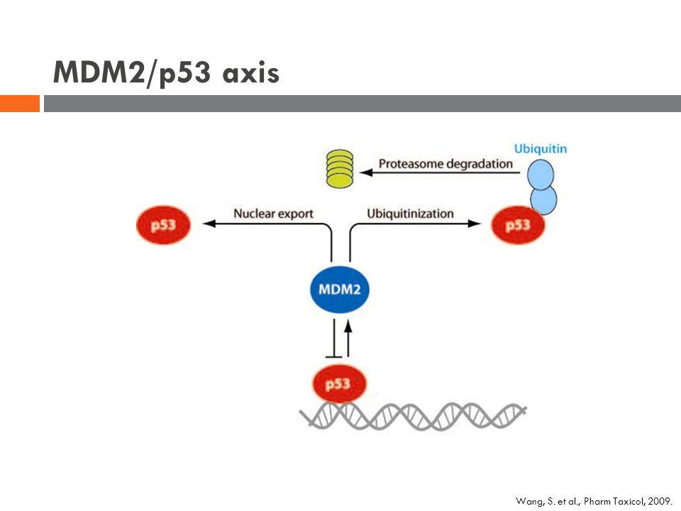 MDM2/p53 axis Wang, S. et al., Pharm Taxicol, 2009.