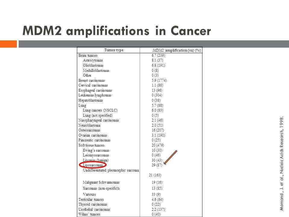 MDM2 amplifications in Cancer Tumor type MDM2 amplification (n a ) (%) Brain tumors6.7 (239) Astrocytomas8.1 (37) Glioblastomas6.8 (191) Medulloblasto