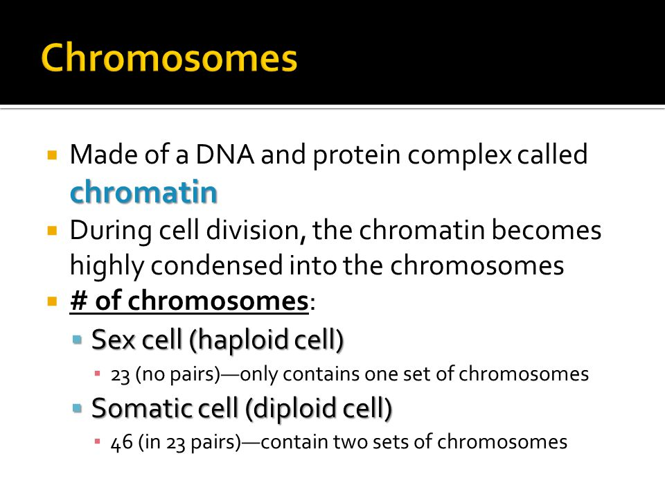  Chromatin  Long, thin fiber  Uncondensed  Before/after cell division  Genetic material usually in this form  Chromosome  Characteristic X shape  Condensed into this shape  Only during cell division