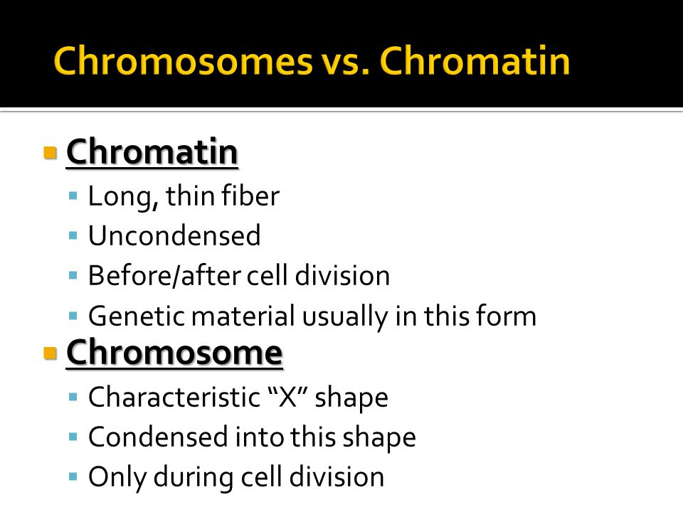  At cell division, each chromosome has been duplicated sister chromatids  The duplicated chromosome consists of two sister chromatids  Centromere – the point where two sister chromatids are connected