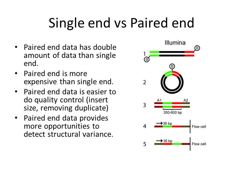 nonCoding RNA