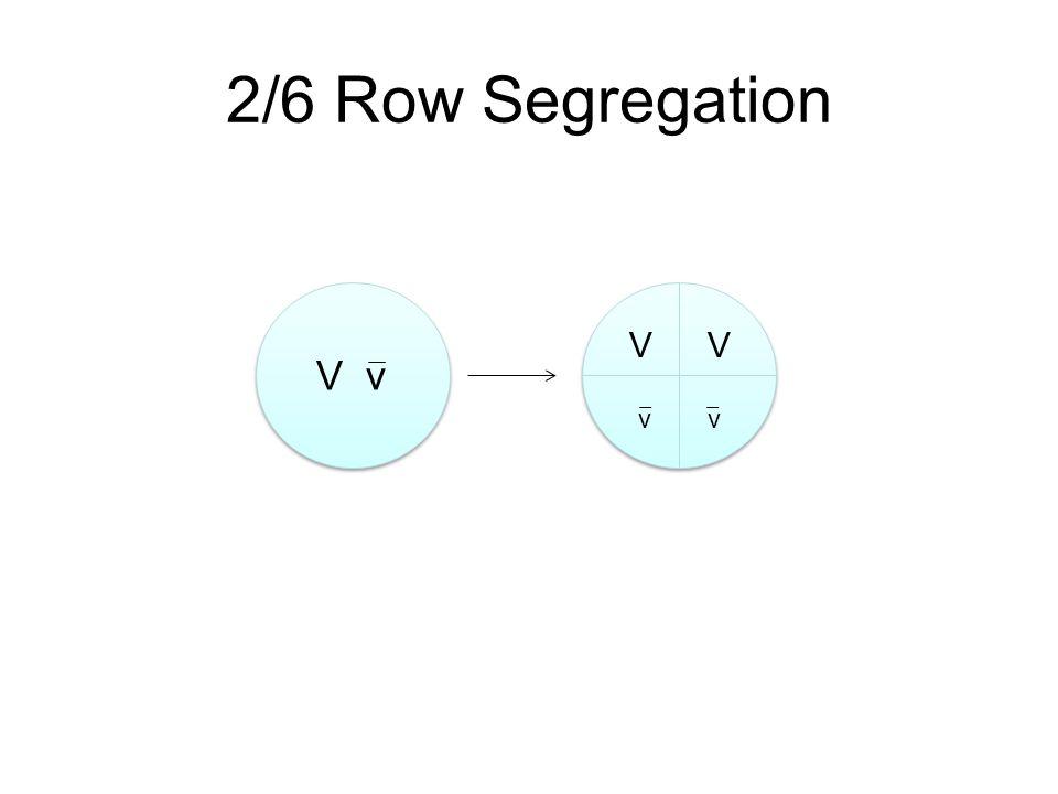 V v VV vv 2/6 Row Segregation