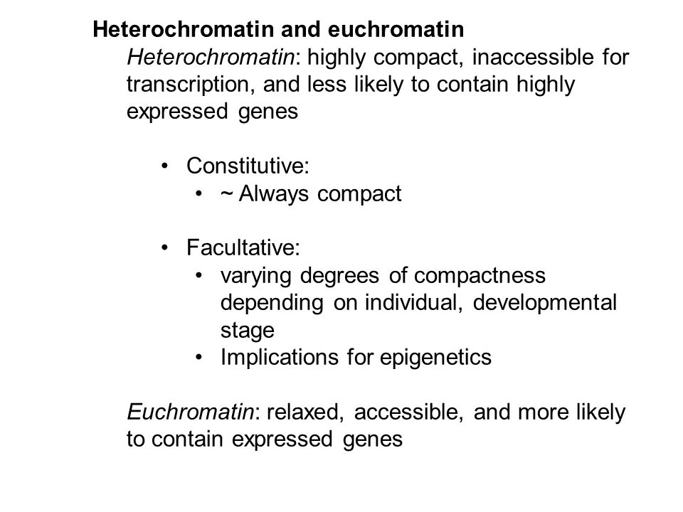 Heterochromatin and euchromatin Heterochromatin: highly compact, inaccessible for transcription, and less likely to contain highly expressed genes Constitutive: ~ Always compact Facultative: varying degrees of compactness depending on individual, developmental stage Implications for epigenetics Euchromatin: relaxed, accessible, and more likely to contain expressed genes